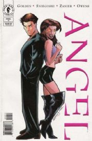 Angel #10 Art Cover (1999) Dark Horse comic book